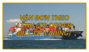 VẬN ĐƠN THEO LỆNH (TO ORDER BILL OF LADING)