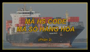 MÃ HS CODE – MÃ SỐ HÀNG HÓA (Phần 2)