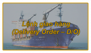 Lệnh giao hàng (Delivery Order – D/O)